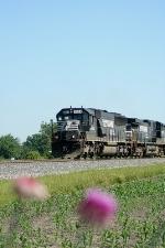 NS 6624